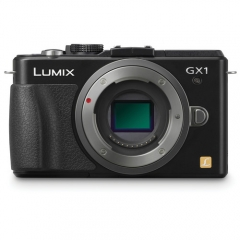 Panasonic Lumix DMC-GX1 with 14-42mm PZ