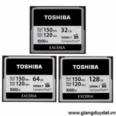 Toshiba Exceria 1000X 128GB (Read 150MB/s - Write 120MB/s)